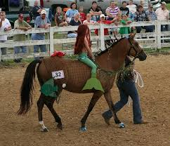 Horse Halloween Costumes Sale 86 Horse Costume Ideas Images Horses Animal