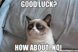 Good Luck Cat Meme - good luck how about no meme grumpy cat bed 7401 memeshappen