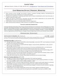 top 10 resume writing tips top 10 resume writers the top 4 executive resume exles written by