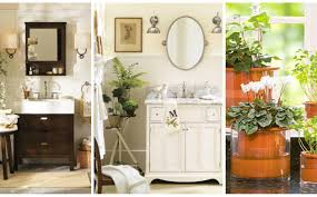 Best Plants For Bathrooms Noteworthy Image Of Indoor Shade Plants Under Shade Loving