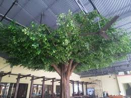 47 best artificial banyan trees ficus tree images on