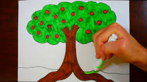 how to draw an apple tree kids coloring page youtube