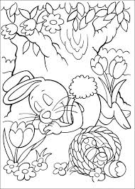 25 peter cottontail ideas peter