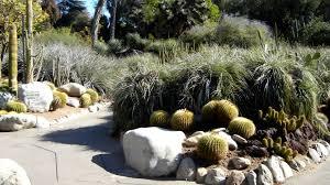 Huntington Botanical Garden by Entrance To Heritage Walk Area Of Cactus Garden Huntington