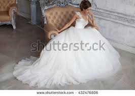 wedding dresses wedding dress stock images royalty free images vectors