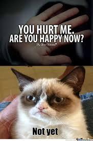 Funny Grumpy Cat Meme - lol grumpy cat ruining an emotional hipster pic l a u g h