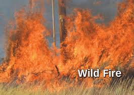 Wildfire Colorado News by Update Windy Conditions Wreak Havoc On Nw Colorado Fires