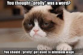 Tardar Sauce Meme - yes i would prolly like fries with that grumpycat meme