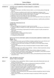 exle of a well written resume gardener resume sles velvet