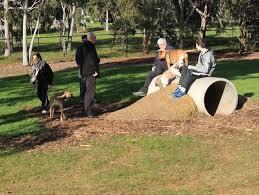 Dog Playground Equipment Backyard by 14 Best Dog Park Images On Pinterest Dog Park Chicago And Dog