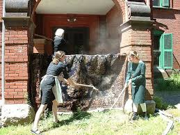 Clean Area Rugs Area Rug Cleaning Throw Rugs How To Clean Medford Oregon