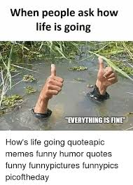 Everything Is Fine Meme - when people ask how life is going everything is fine how s life