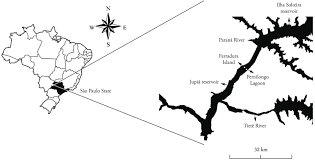 Parana River Map Endohelminths In Cichla Piquiti Perciformes Cichlidae From The