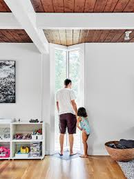 100 home design story coins happy pet story virtual sim