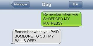 Dog Text Memes - what if dogs could text 25 hilarious texts from dogs bored panda