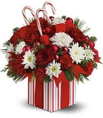christmas flower arrangements pictures of christmas flower arrangements festival collections
