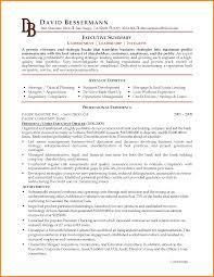 Best Resume Executive Summary by Executive Resume Summary Examples Template