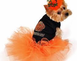 Boy Dog Halloween Costumes Large Dog Costume Etsy