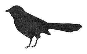 black bird silhouette clip art library
