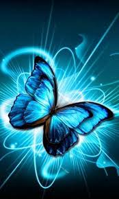 butterfly blues butterfly wallpaper and moth