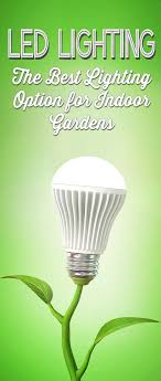 led lights for indoor plants led grow lights the best choice for indoor plants gardens