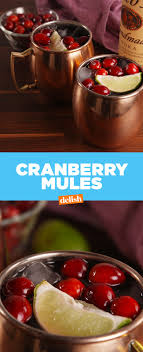 you should a cranberry mule in your all thanksgiving day