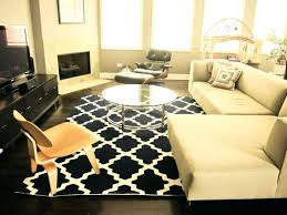 Home Goods Area Rugs Tj Maxx Area Rugs Does Carry Amazing Miller Ls Home Goods Gold