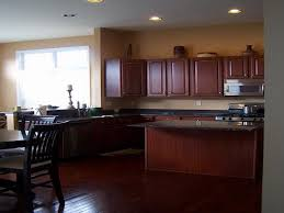 winsome kitchen paint colors with dark cabinets modest design