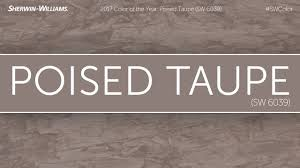 ideas gorgeous taupe grey wall paint gray and taupe colors taupe