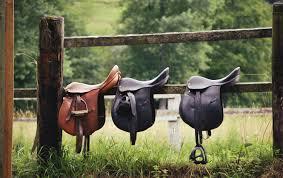 best horse saddles reviewed mycuddlybuddy