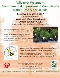 online native plants pick up westmont native tree u0026 shrub sale scarce