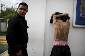 economic reason for gang member tattoos business insider