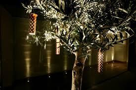 inspirational garden lighting tips u0026 ideas products john