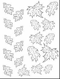 remarkable fall leaf templates printable with leaves coloring