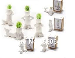 Office Desk Gifts Free Shipping 10pcs Magic Diy Grass Bonsai White Grass Office
