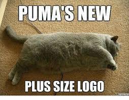 Puma Pants Meme - puma s new plus size logo zipmeme puma meme on me me