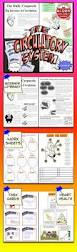 the human body heart circulatory system education lesson