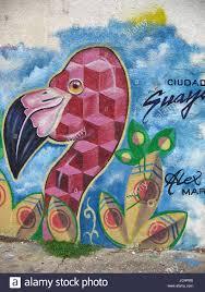 venezuelan street art abstract flamingo graffiti mural painted stock photo venezuelan street art abstract flamingo graffiti mural painted on a wall of atlantico avenue in ciudad guayana venezuela