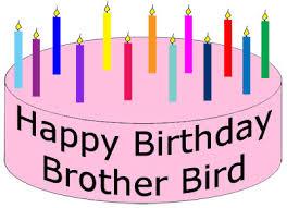 birthday cake brother bird birdies100 flickr