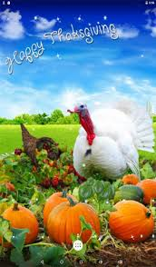 thanksgiving pictures wallpaper impremedia net