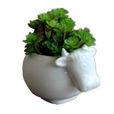 Cute Flower Pots by Popular Ceramic Planters Buy Cheap Ceramic Planters Lots From