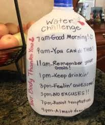 Is The Water Challenge Safe Water Jug How To Track Your Daily Water Intake Today Is The