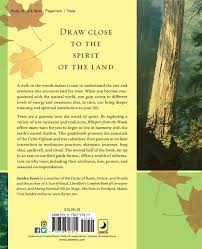 Trees And Their Meanings Whispers From The Woods The Lore U0026 Magic Of Trees Sandra Kynes