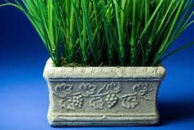 How To Make Planters by How To Make Concrete Flower Planters Home Guides Sf Gate