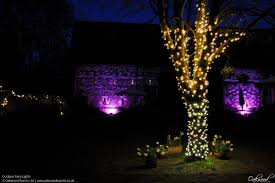 how to put lights on a tree outdoors outdoor lighting hire oakwood events