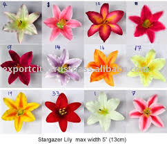 stargazer lilly flower stargazer casablanca 5 13cm buy