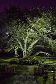 Landscape Tree Lights Artistry Of Light Baton Louisiana Artistry Of Light