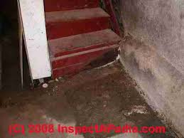 How To Stop Water From Leaking Into Basement by Wet Basement Diagnosis U0026 Cure How To Inspect For Basement Leaks