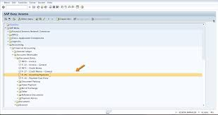 sap payment differences processing free sap fi training