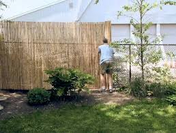 gartengestaltung sichtschutz 34 ideen für sichtschutz im garten mit bambus